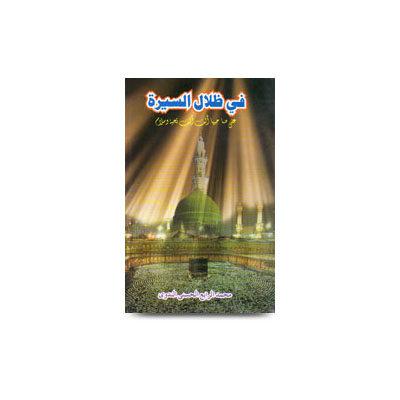 في ظلال السيرة على صاحبها الصلاة والسلام |fi zilalis seerat by rabey hasani