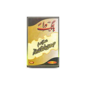ماہنامہ بانگ درا، لکھنؤ، مفکر اسلام نمبر |bang e dara-may-june-july-2000