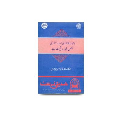 دعوت کا کام ہی امت مسلمہ کی اصل قدروقیمت ہے |dawat ka kaam hi ummate muslima ki asal qadr wa qeemat he