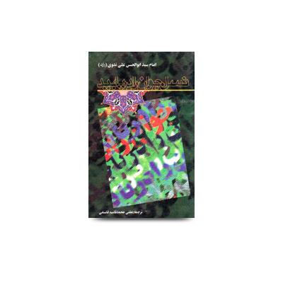 نسل جوان را دریا بید |Molana abul hasan Persian book fa-20