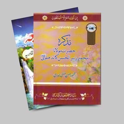 Sayyid Mehmood Hasani
